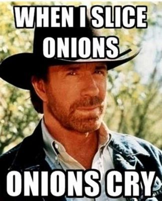 50 Best Chuck Norris Jokes And Facts
