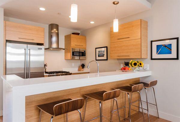 20 Dashing and Streamlined Modern Condo Kitchen Designs