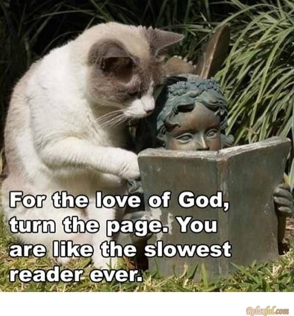 The Slowest Reader Ever