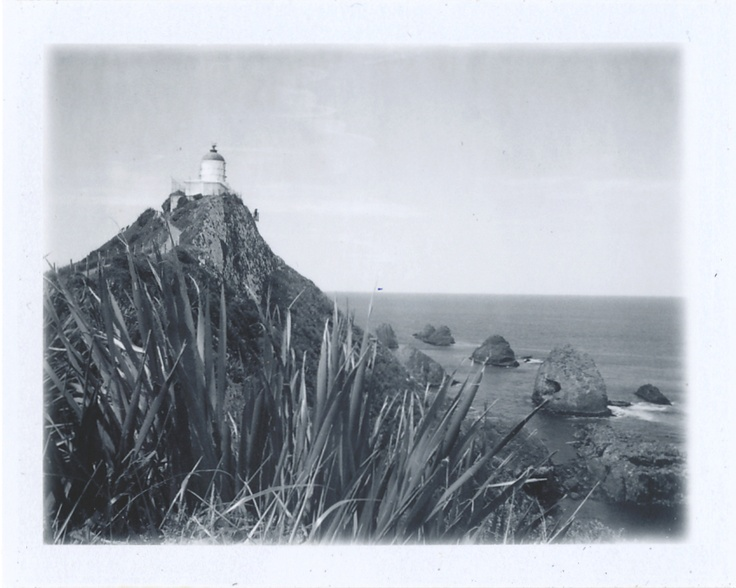 Nugget Point Lighthouse: Otago, New Zealand