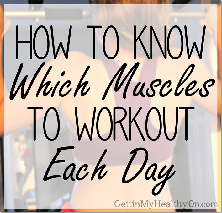 An example of different muscle groups to focus on each day in an average week