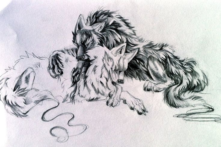 More wolves. More Awwwwwwww Still in a mushy mood. And I am still loving pencil drawings on bristol board XD