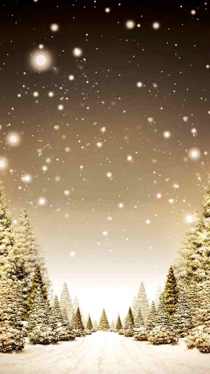 Snowy 2014 Christmas tree forest iPhone 6 wallpaper gold