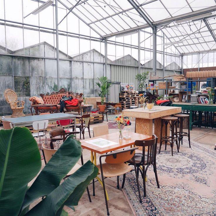 Op pad voor een nieuwe blog. Dit keer in de kas van het Kweekcafé de nieuwe hotspot bij de Kweektuin  #haarlemcityblog #haarlem #kweekcafe #kweektuin #hotspot #new #cityblog #stadspark #kleverlaan