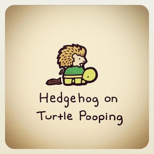 Turtle hedgehog on turtle pooping