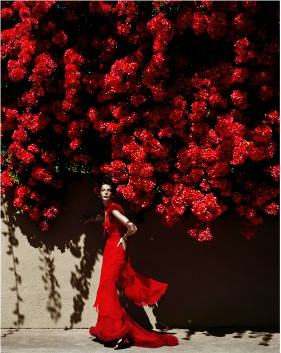 #Red Mario Testino- Queen of Hearts.
