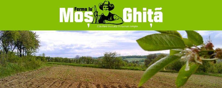 Ferma lu` Moş Ghiţă, Sursă de Inspiraţie Pentru Tineri Ţărani http://platferma.ro/ferma-lu-mos-ghita-sursa-de-inspiratie-pentru-tineri-tarani/