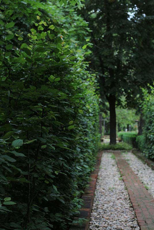 A hidden alley