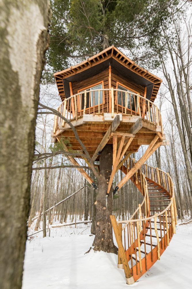 Love This Treehouse Designed By Buffalo Treehouse Asheville Glamping Is Planning On Building Another T Beautiful Tree Houses Tree House Diy Tree House Designs