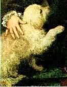 The Bichon Frisé in Art