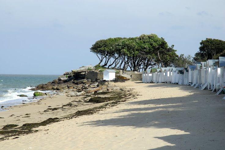 l'ile de Noirmoutier - la plage du bois de la chaize - Vendée -