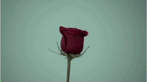 Te dejaron, con las bragas en la mano y el corazón roto… - Javier López Píriz