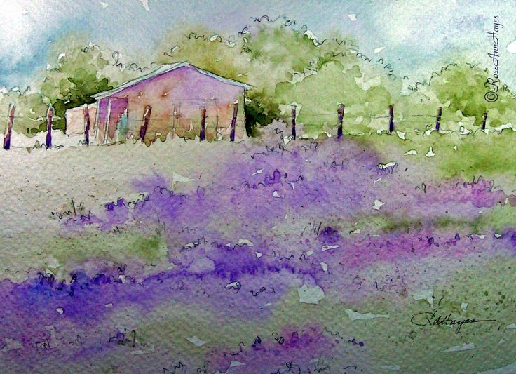 Lavender Field Watercolor Painting