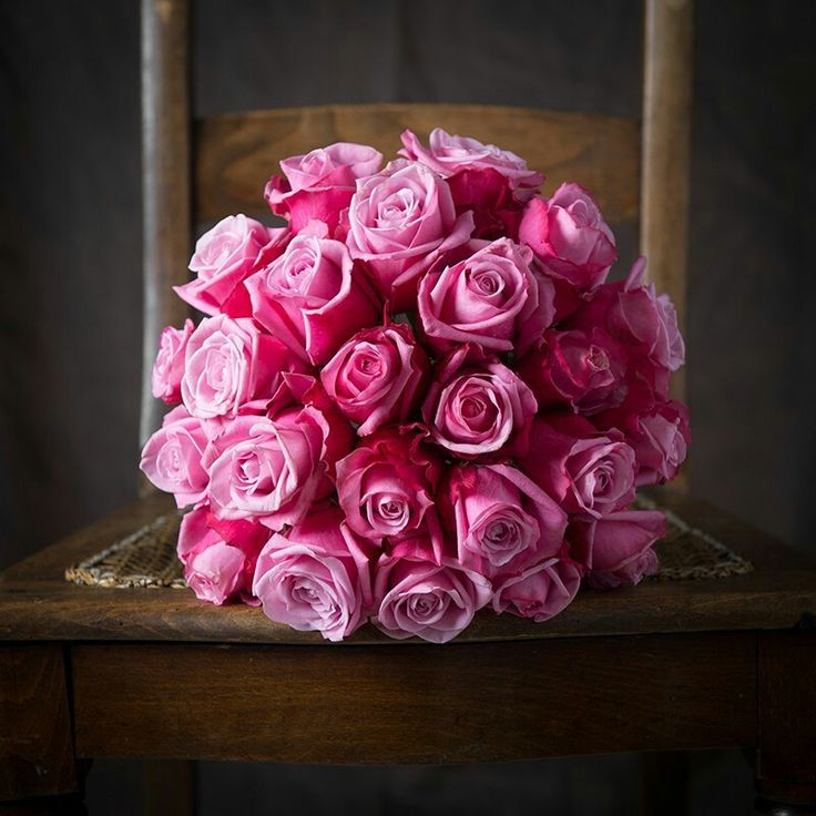 146 best rose &flowre images on Pinterest | Flowers, Roses and Flower