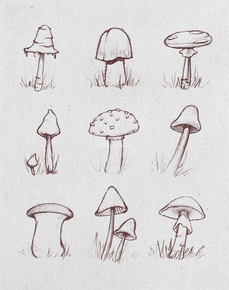 Sketch of growing mushrooms . . #mushroom #growth #nature #fungi #autumn #fa