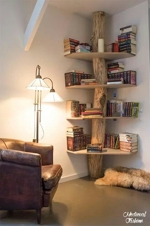 Branch shelf- perhaps I can make it into a cat tree idea :)
