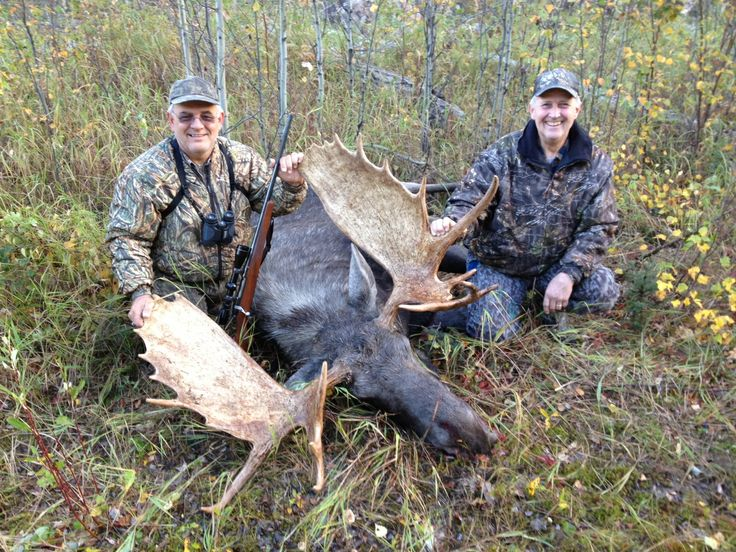 9 best moose hunting in alberta canada images on pinterest alberta come moose hunting in alberta canada with boss outfitting bossoutfitting and enjoy a hunting adventure of a lifetime picture yourself in solutioingenieria Gallery