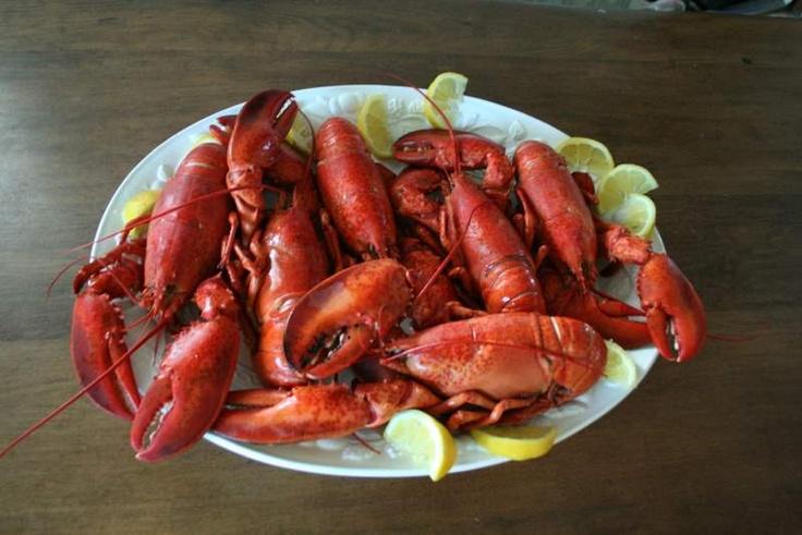 I will miss lobster season!