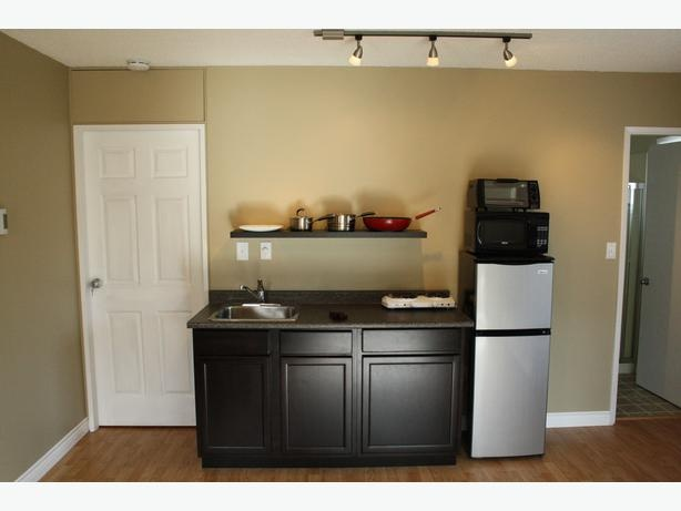 $650 Small bachelor Suite-1 room apartment ? Perfect for student.