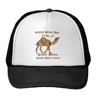 Its Hump Day Mesh Hat