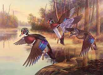 Art Of Randy Mcgovern Limited Edition Waterfowl Art