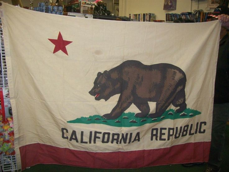 Flag says 4x6 but I measured at 4x5. Huge California Republic Flag. Otherwise nice condition. It does have some small spots. | eBay!