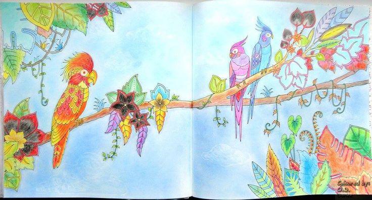 Mágikus Dzsungel - Papagájok Készült: Marco Raffiné ceruzák Háttér: Colorino Artist Porpasztell Magical Jungle - Parrots Coloured with Marco Raffiné pencils  Background: Colorino Artist Soft Pastels
