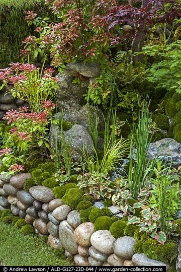 Raised garden with stones, plants and moss