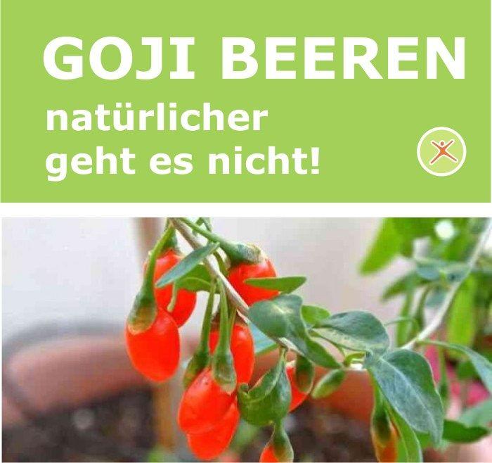 Die Goji Beeren, auch gemeiner Bocksdorn genannt, wird seit langer Zeit in der TCM (traditionellen chinesischen Medizin) als Medizin verwendet. Zusätzlich findet sie aber auch ihren Platz in der chinesischen Küche.