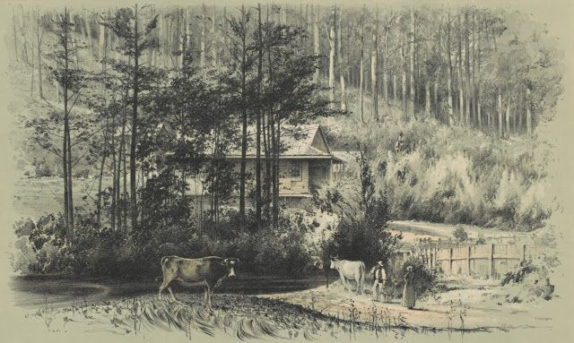 Approved Land Licences Victoria January 1890 - Pictured: A Bush Home 1890