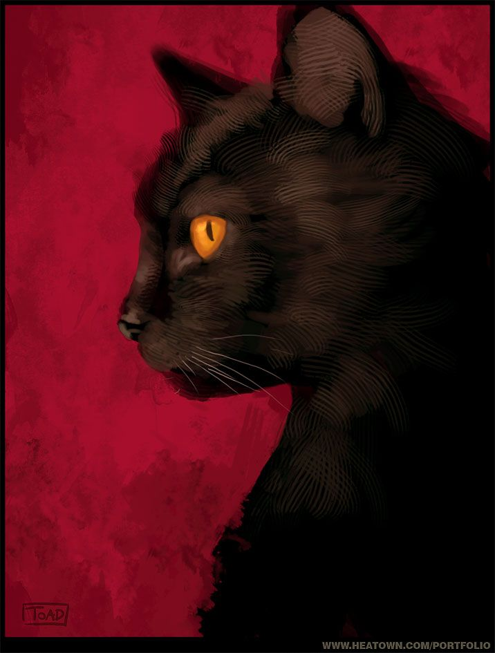 Made by: Sylvain Sarrailh , Black Cat (I love the contrast with the red background) - Illustration