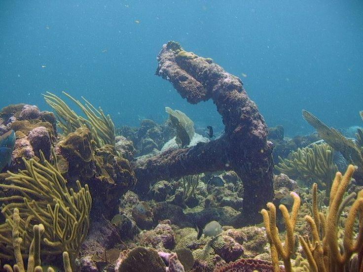 Scuba diving in Tobago, Tobago, Caribbean - Tropical Sky