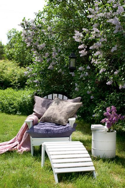 At my future home, I will have an over-abundance of lilac bushes. I will have so many lilac bushes that the combined scent of all of them will - while being intolerably wonderful - quite literally knock visitors unconscious. And it shall be marvelous. :)