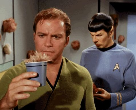 Tribble GIF - Tribble get out of that cup - Tribbles do not need to drink coffee - You look ridiculous - You don't even have legs to crawl out - Tribble, you are drunk - I'm not pulling you out if you are stuck there - I'm so disappointed in you right now, Tribble - William Shatner - Spock - Star Trek - this made me laugh!