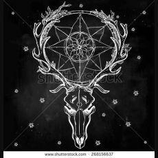 Belle crâne tatouage ligne Art vintage cerfs, buffles, les élans, les cornes Antlers avec des branches, des feuilles et des attrape-rêves orné d'étoiles dessiné à la main Vector illustration Chalk isolé sur tableau - Shutterstock