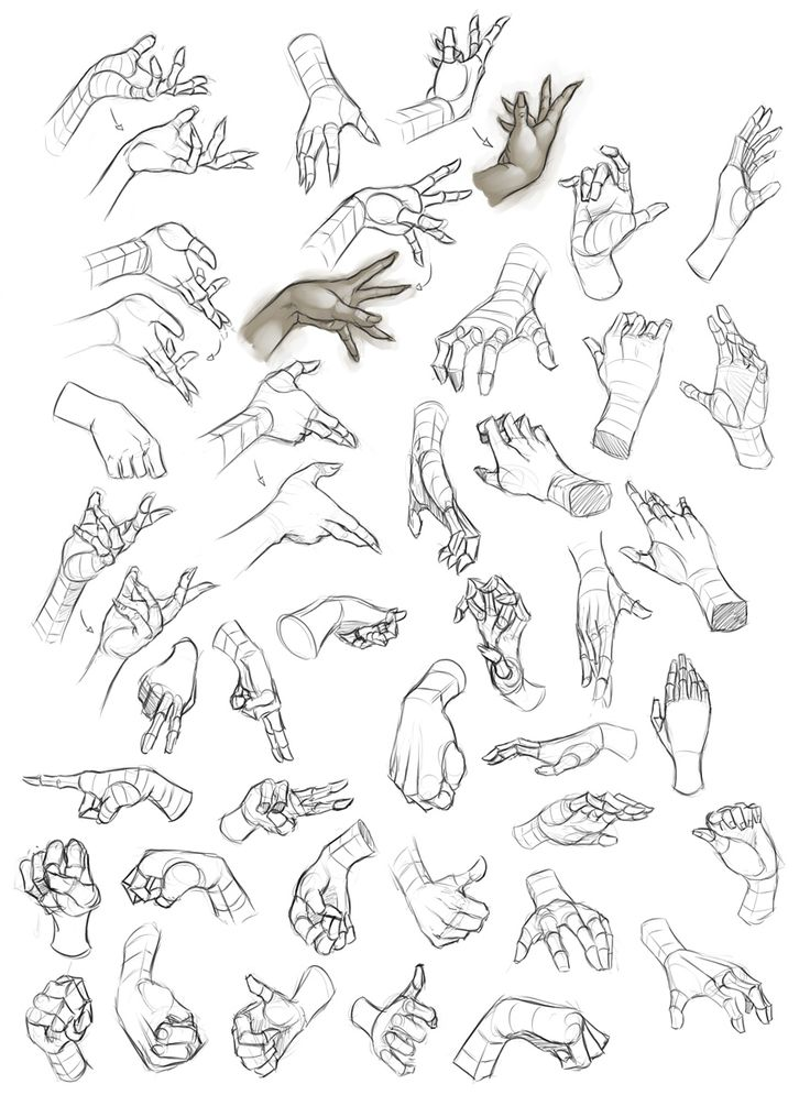 Female_Hand_Study_1_by_Dhex.jpg 864×1,180 像素