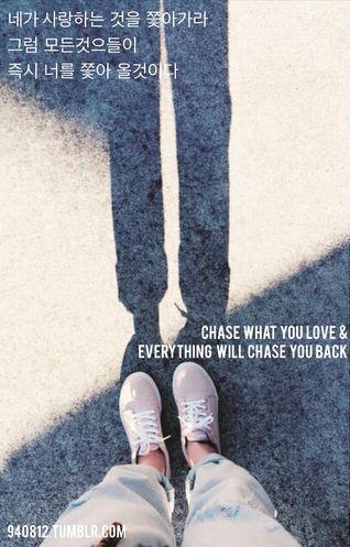네가 사랑하는 것을 쫓아가라, 그럼 모든것을들이 즉시 너를 쫓아 올것이다.Chase what you love and everything will chase you back.