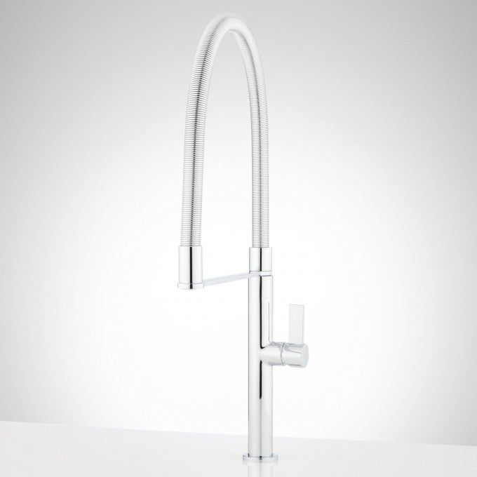 Bailey Single-Hole Kitchen Faucet With Tall Spring Spout in ...