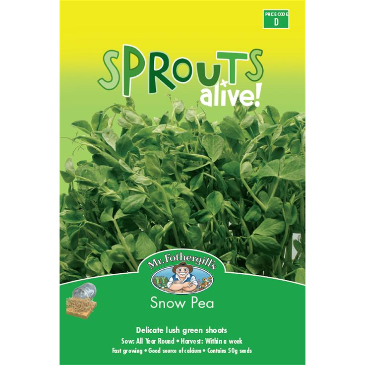 Mr Fothergills Sprouts Alive Snow Pea Seeds | Bunnings Warehouse