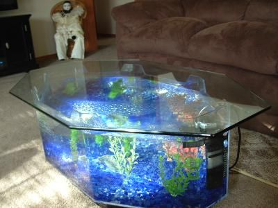 Best Fish Tank Ideas Inspirations Images On Pinterest Fish - Acrylic aquariumfish tank clear round coffee table with acrylic