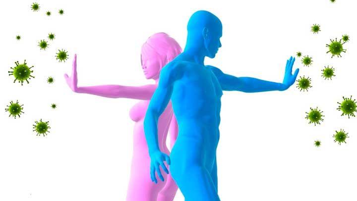 El sistema inmune es el encargado dar respuesta inmediata ante patógenos que entran a nuestro cuerpo