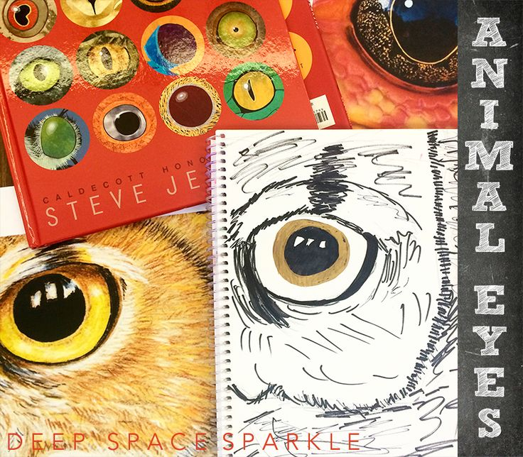 Close-up Animal eyes art project for kids