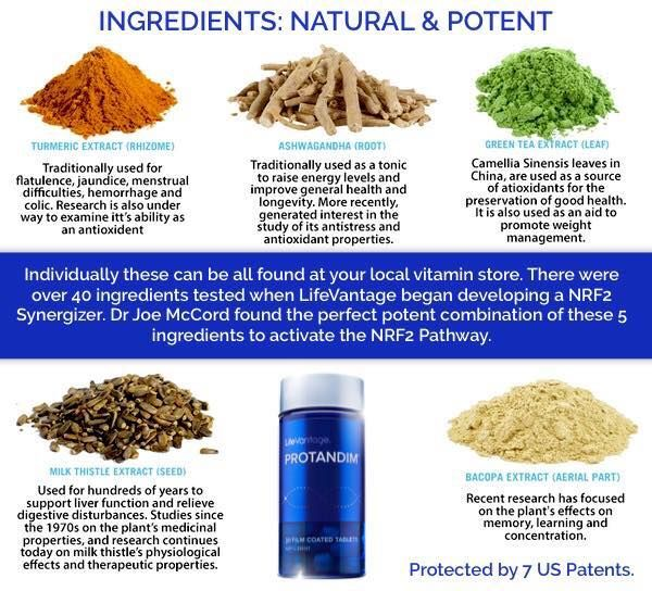 """Image result for what is protandim made of"""""""