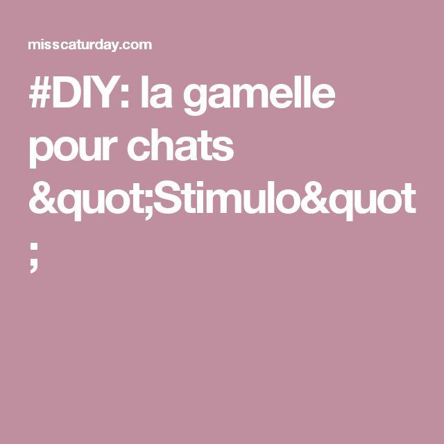 """#DIY: la gamelle pour chats """"Stimulo"""""""