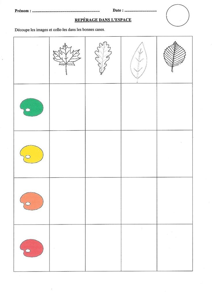 Welke kleuren hebben de bladeren?