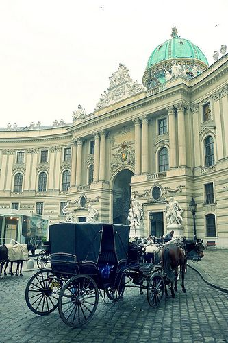 A Fiaker at Hofburg Palace by Gilderic Photography, Medical tourism in Europe http://www.jmb-active.com/?page=medical_tourism #travel #health