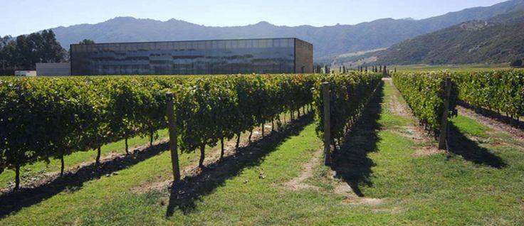 Las Ninas Winery - #Wine Tours in #Colchagua Valley Chile - #Pinterest-Colchagua-Tours-Wine-Tours