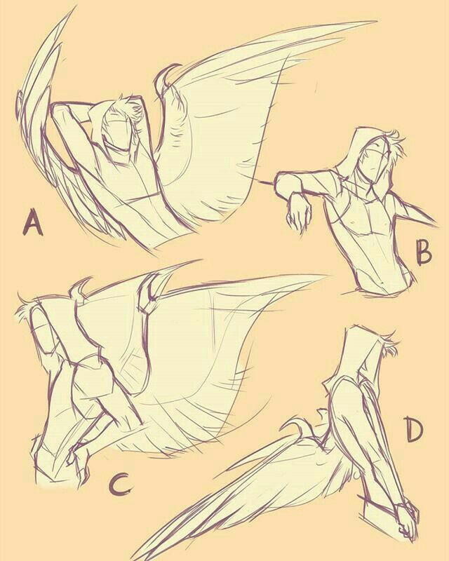 Drawing Reference Human With Wings How To Draw Wings Drawing Reference Poses Drawing Reference Art Reference Poses