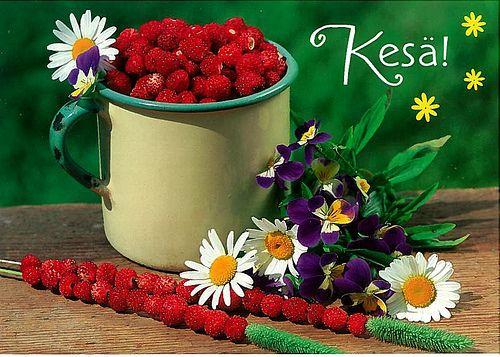 23104 J Kesä! Wild strawberries - not available, via Flickr.
