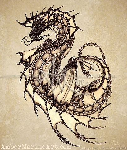 "Gallery • ""Tsunami"" freehand sea dragon graphite illustration, art by wildlife artist Amber Marine ••• AmberMarineArt.com •••  (copyright 2005, all rights reserved.)"